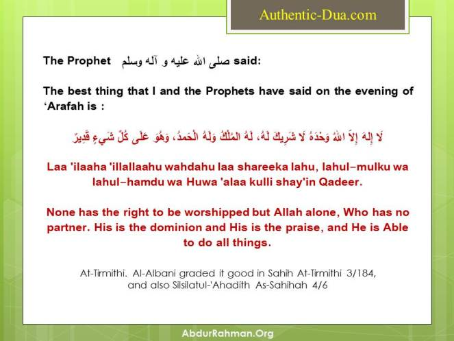 Best dua on the Day of Arafah