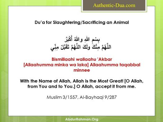 Du'a for Slaughtering/Sacrificing an Animal